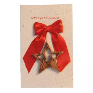 Christmas Card & Ornament - Star Nativity